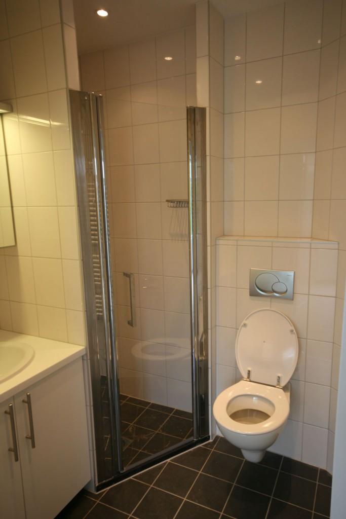 Professionele plaatsing van uw badkamer? - Hartman